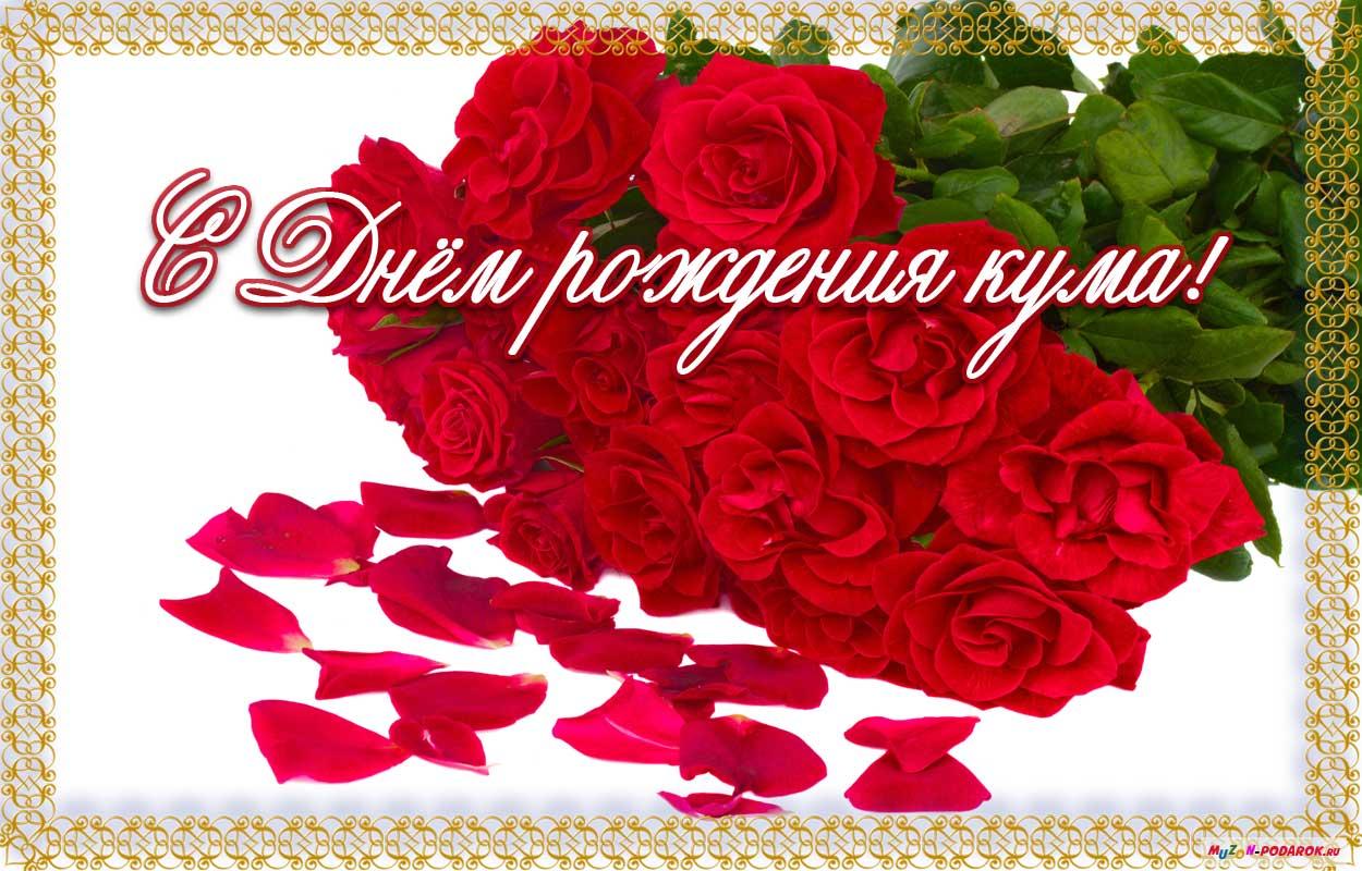 Поздравление с днём рождения женщине в стихах прикольные куме 44