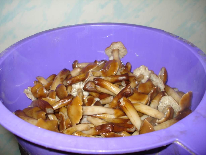 Как сделать грибочки рецепт